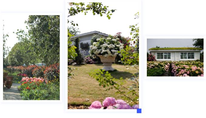 园艺行业解决方案2.png
